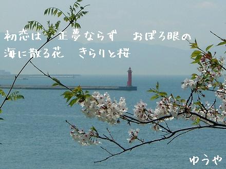 「海に散る花」クリックするとタテ型写真詩になります!