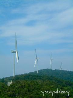 「佐田岬半島の風車」クリックすると巨大化します!
