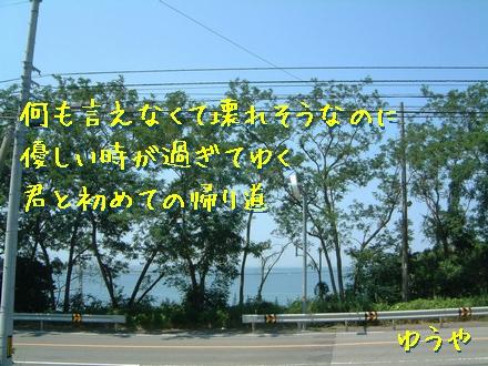 「君と初めての帰り道」クリックするとタテ型写真詩になります!