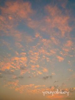 『明日の僕へ』 クリックすると写真詩になります!