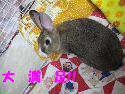 IMG_ホリ5090