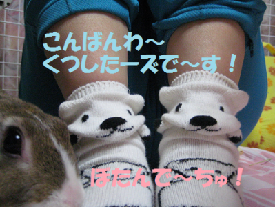 IMG_靴下0459