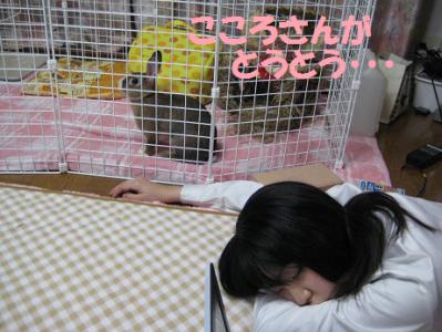 IMG_こころ0726