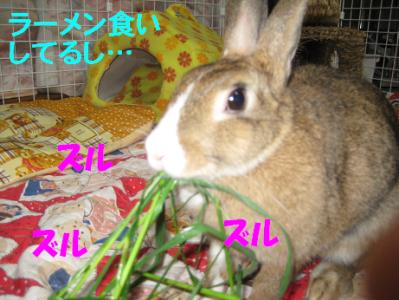 IMG_草0790