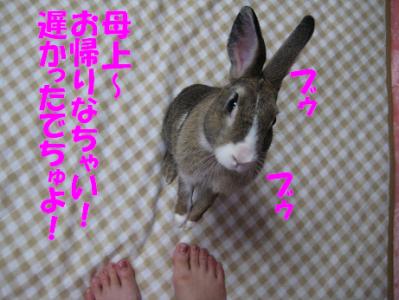 IMG_文句0916