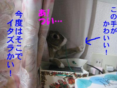IMG_いたずら0923
