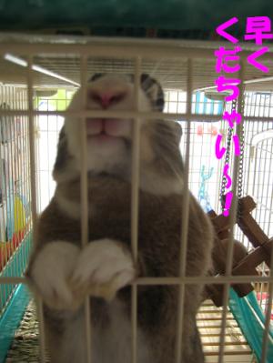 IMG_くんくん1282