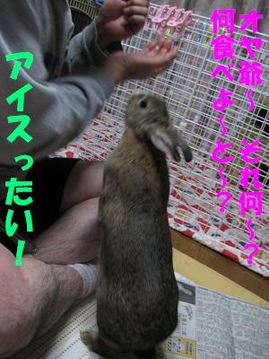 IMG_それ何1604