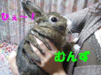 IMG_だっこ2132