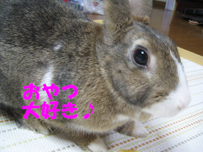 IMG_おみやげ2369