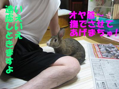 IMG_オヤ爺2489