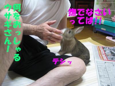 IMG_オヤ爺2490