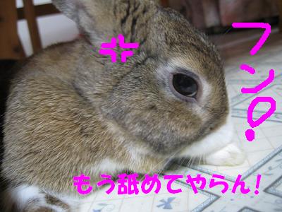 IMG_いじけ3010