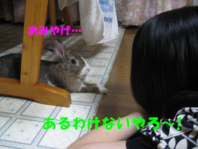 IMG_いじけ3095