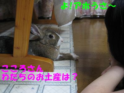 IMG_いじけ3096