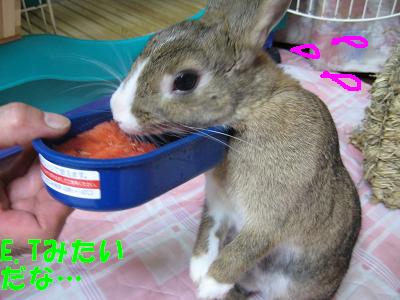 IMG_立ち食い3311
