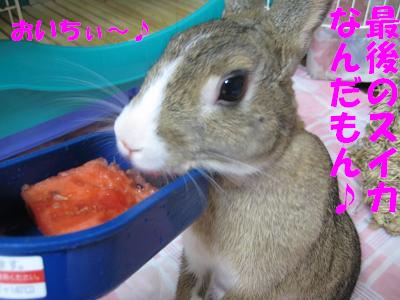 IMG_立ち食い3327