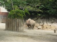 IMG_動物園3605