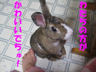 IMG_たっち3779