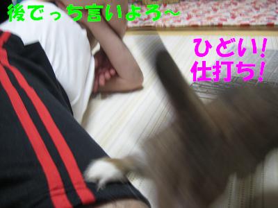 IMG_オヤ爺3841