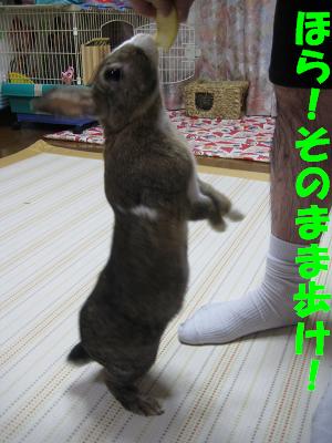 IMG_たっち3862