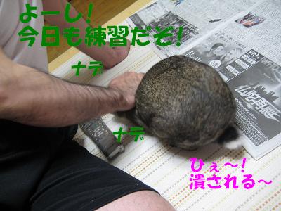 IMG_オヤ爺3848