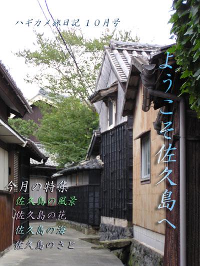 sakusima1.jpg