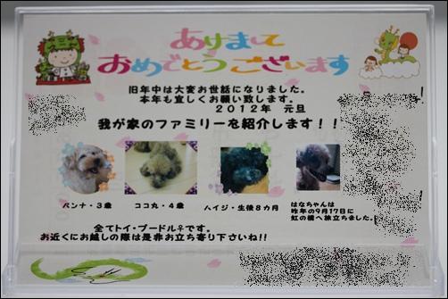 20120103(6).jpg