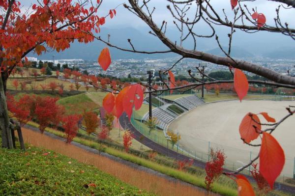 東温市総合公園