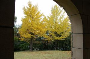 8総合公園DSC_79450001