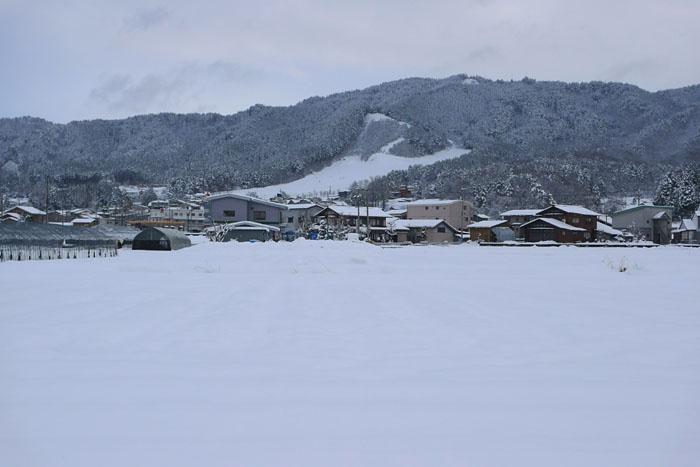 高山市 スキー場 ウインタースポーツ