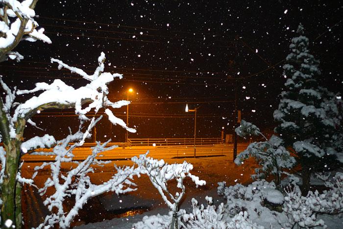 飛騨高山 雪まつり 気功