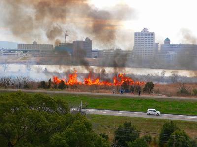 写真キャプション=葦が燃えて炎に包まれた淀川の河川敷