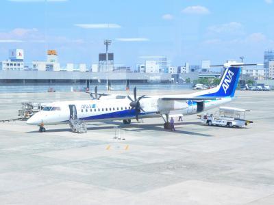 写真キャプション=大阪伊丹空港から新潟空港まで乗ったプロペラ機