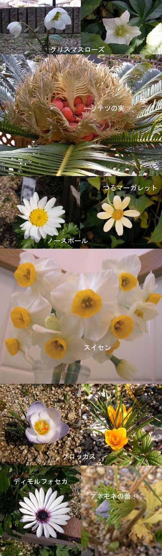 090211moji2.jpg