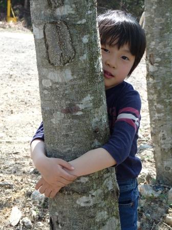 木に抱っこ