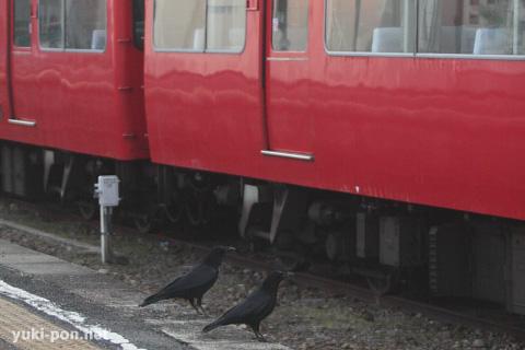 名鉄7000系@布袋駅その3