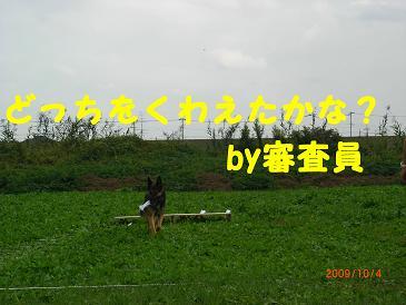 CIMG4899.jpg