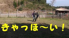 M1050001_sh01.jpg