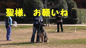 M1060007_sh01.jpg