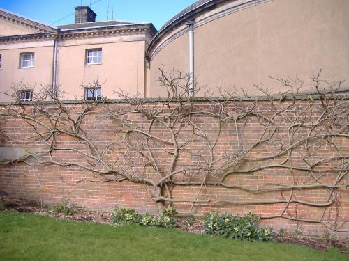 Kedleston Hall13