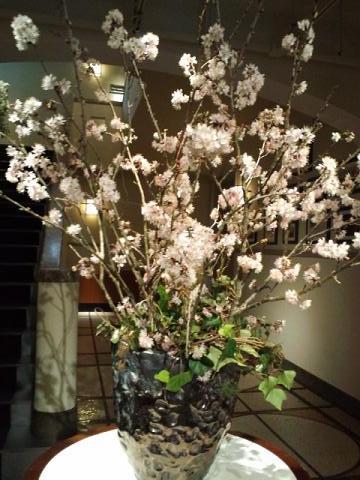 モノリス 玄関 山桜