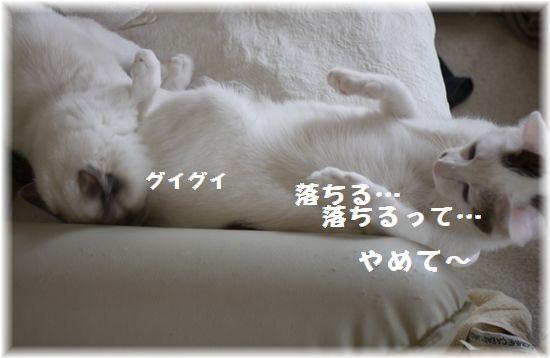 落ちる120406