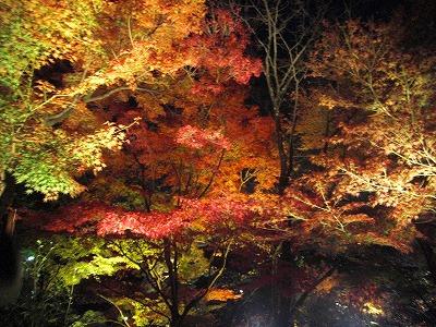 京都10秋 038