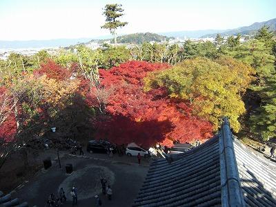 京都10秋 139