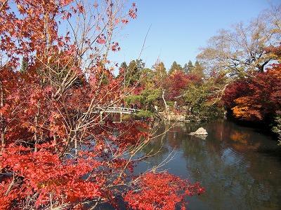 京都10秋 279