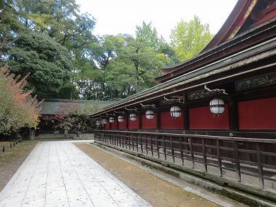 京都23秋 158