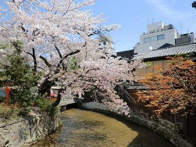 京都11 033