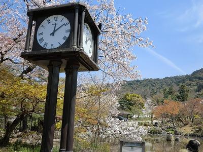 京都11 047