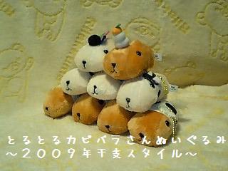 ちこちゃん日記19★カピバラ丼??★-6
